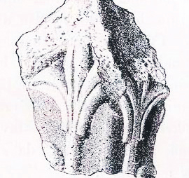Ljiljan na arhitektonskom ulomku iz 6. stoljeća, Bihać
